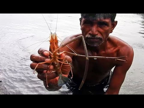 Shrimp Baking on Flame – Bake the Shrimp on the Fire – Healthy Prawns are bake in my province