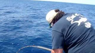 Ramidogg Fighting & Landing A 66.8 Lb Yellowfin Tuna