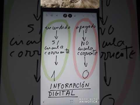 Información digital. bit y byte