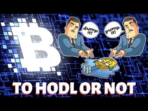 Bitcoin   To HODL Or Not To HODL