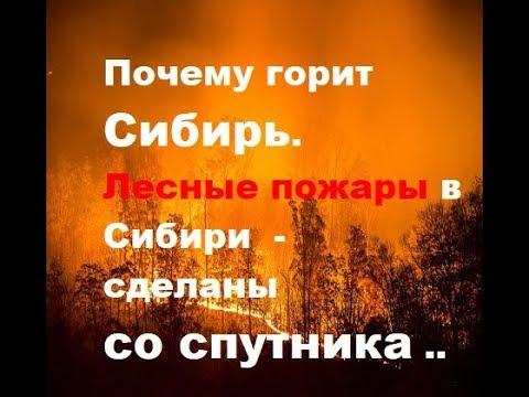 Почему горит Сибирь. Лесные пожары в Сибири - сделаны со ...