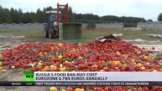 Big Bite: Russia's food ban may cost EU 6.7bn yearly
