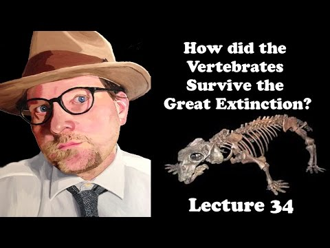 Lecture 34 How did the Vertebrates Survive the Great Extinction?