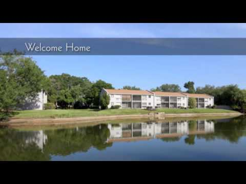 The Sun Lake Apartments For Rent In Brandon Florida