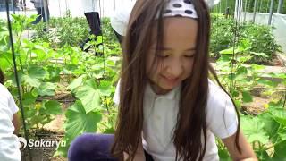 Özel Eskişehir Sakarya Eğitim Kurumları Tanıtım Filmi