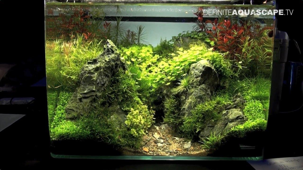 The art of the planted aquarium 2017 nano tanks 20 22 for Plante nano aquarium