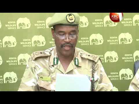 Kenya records gains in efforts to conserve endangered wildlife