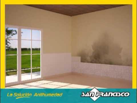 Basta de humedad youtube - Soluciones para paredes con humedad ...