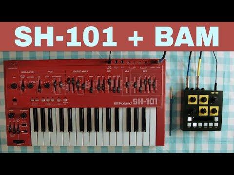 ROLAND SH-101 + OTO MACHINES BAM ~ Will They Pair? Ep.18
