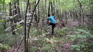 Ужас в лесу