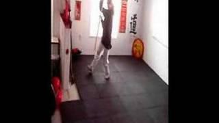 wudang 8 immortals drunkard kung fu