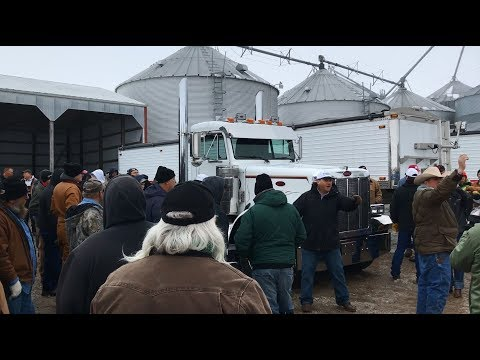 Pair of Peterbilt 379 Day Cab Trucks (2004, 1998) Sold Yesterday on Murray, Neb. Farm Auction