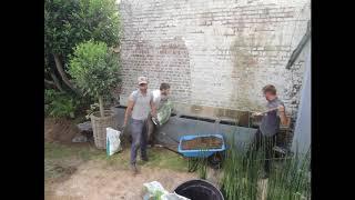 TIMELAPSE #5 - Plantation de prêles en pots