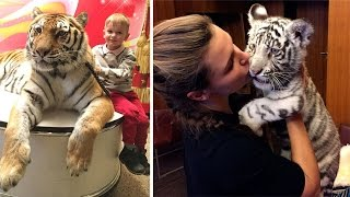 Man Lives With Rescued Tigers