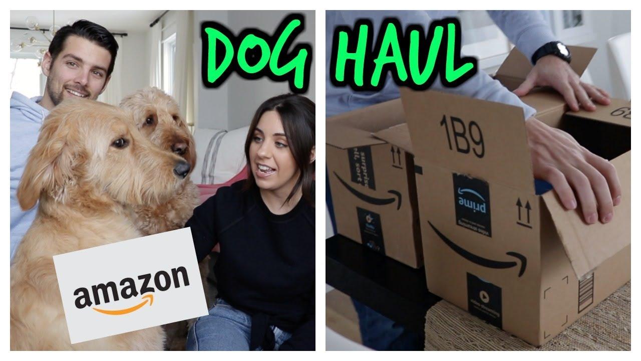 AMAZON DOG FAVORITES HAUL! BEST DOG FINDS!