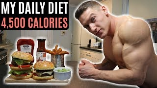 My Daily Diet   4,500 Calories   IIFYM Full Day of Eating