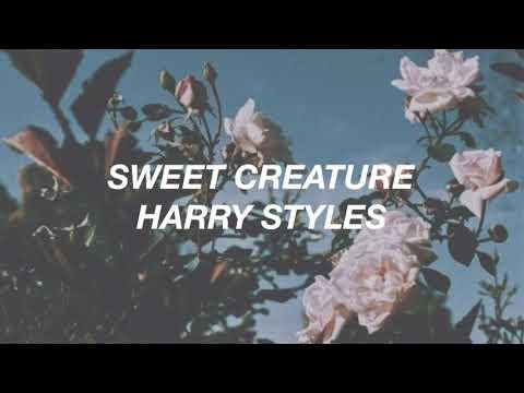 Harry Styles - Sweet Creature (Lyrics)