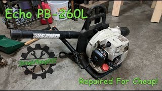 Echo Backpack Leaf Blower Brought Back to Life!