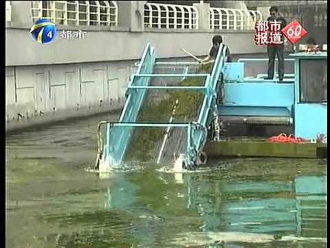 River Floating Algae Mowing Ship-(skype:sanjiangdredger)