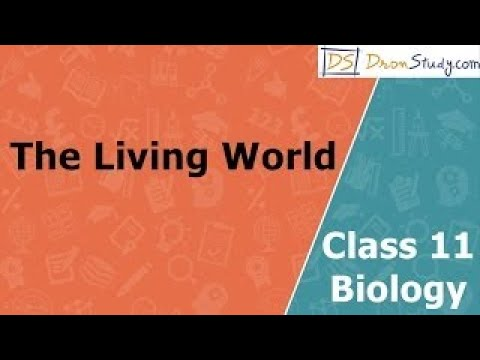 The Living World | Class 11+12 Biology Video Lectures in English