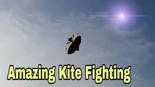 Lahore amazing kite fighting