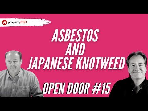 propertyceo-open-door-#15-–-asbestos-and-japanese-knotweed