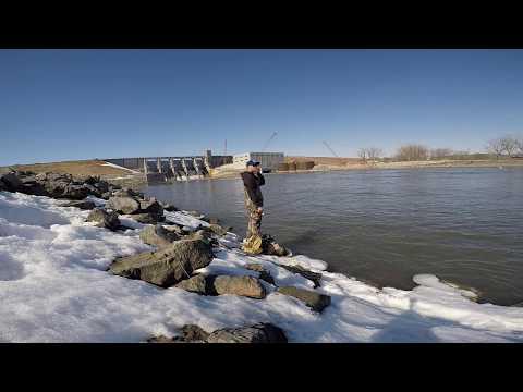 Catfish And Wiper Fishing Below The Dam