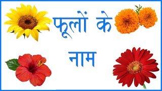 फूलों के नाम हिंदी और अंग्रेजी में जाने | Flower Names in Hindi | Flower Pictures | Flowers Names