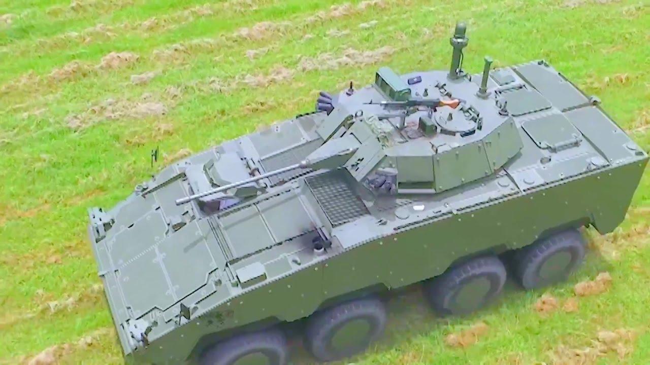 Resultado de imagen para Clouded Leopard 8x8