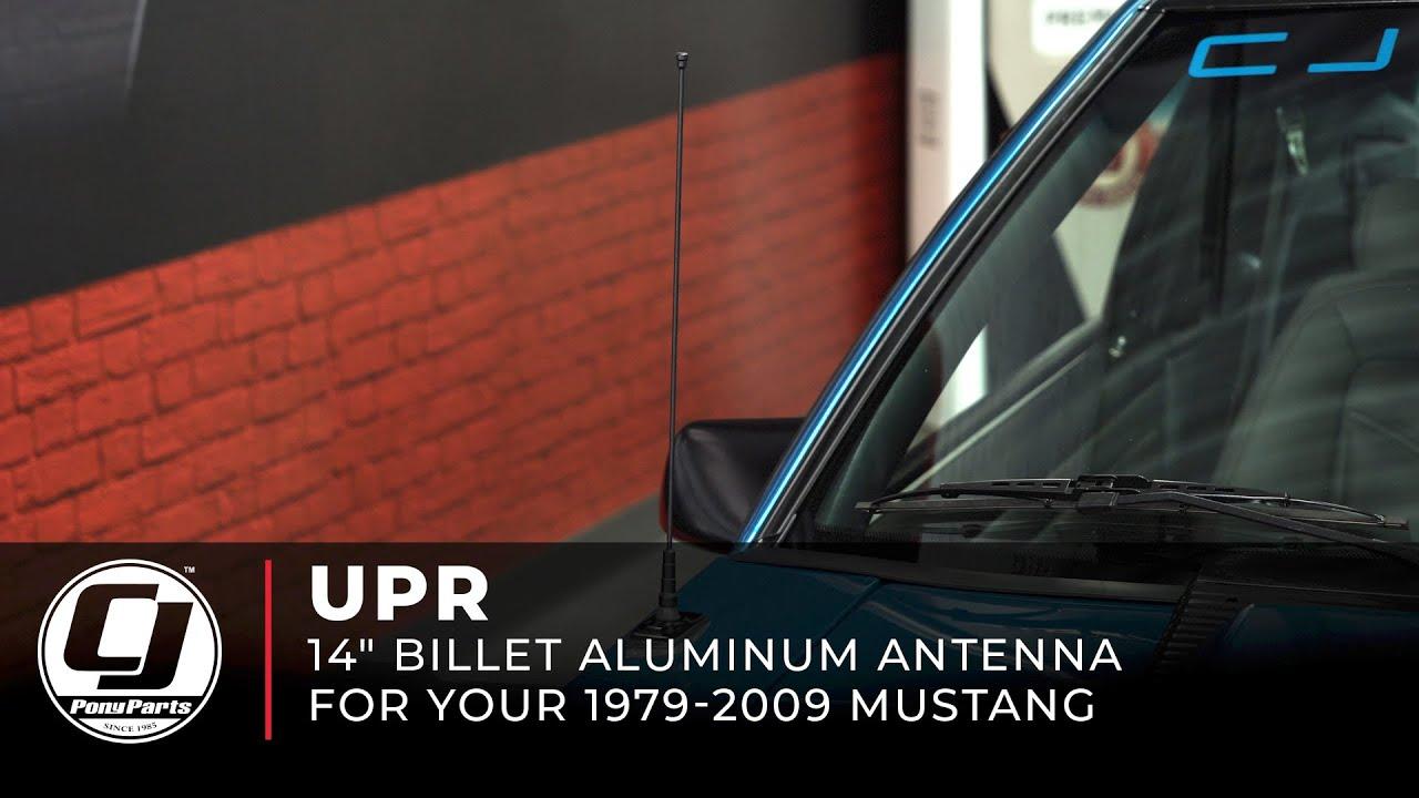 Mustang Ford Door Hinge Rebuild Kit Both Doors 7 1982 1993 Installation Youtube