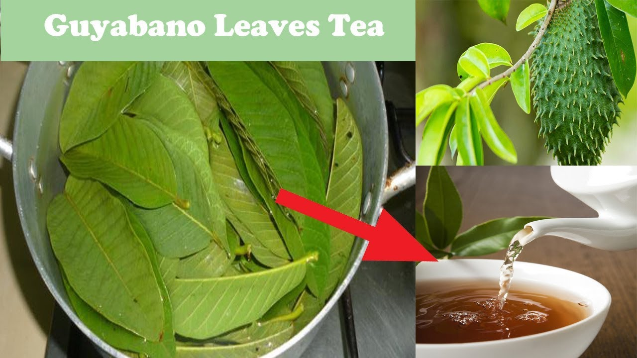 is guyabano leaves good for high blood pressure