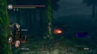 DarkSouls: Forest Chameleon #2