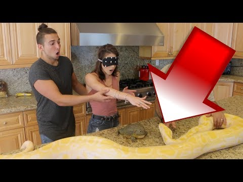 GIANT PYTHON SURPRISE DATE PRANK!! (SHE FREAKED OUT)