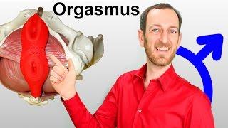 Mehrfacher Orgasmus für Männer - PC Muskel trainieren