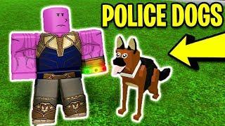 [GUIDA COMPLETA] POLICE DOGS AGGIORNAMENTO in MAD CITY! MAD CITY PETS! Roblox Mad City Nuovo aggiornamento