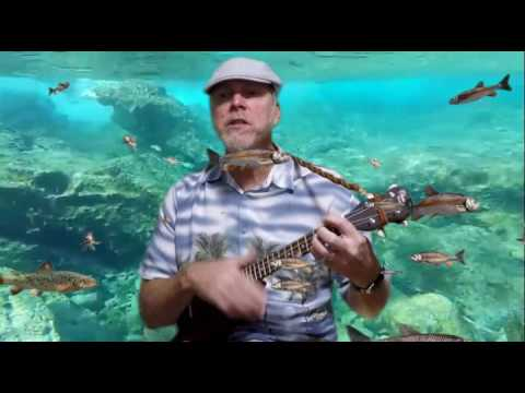 Crawdad Hole, 278th season of the ukulele, trees
