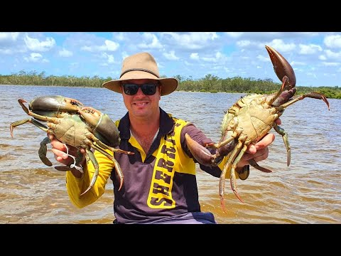GIANT MUDCRAB HUNT - Chilli Mudcrab Catch Clean And Cook