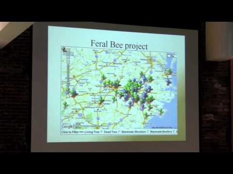 Deborah Delaney Speaking at the 2013 Pacific Northwest Treatment Free Beekeeping Conference