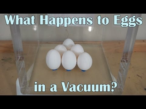 What Happens When You Put 6 Eggs In A Huge Vacuum Chamber?