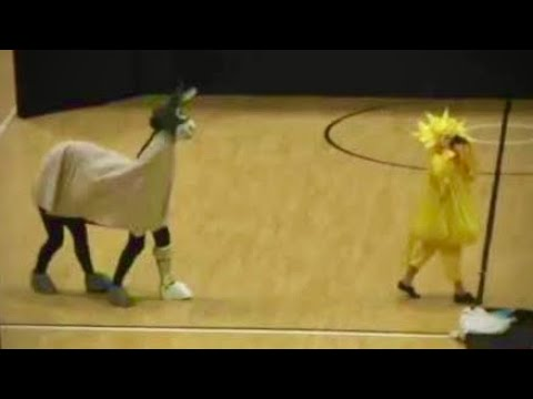 Wonky Donkey and Yellow Bird Dance. By members of Deborah Hale's dance group.