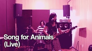 Poemas Elétricos - Song for Animals (Save the Animals) Live LEGENDADO