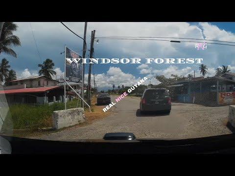 Windsor Forest, West Coast Dem, Guyana l Real Nice Guyana (HD)