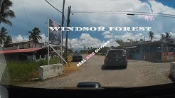 Windsor Forest, West Coast Dem, Guyana l Real Nice Guyana (HD)