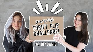 Thrift Flip Challenge With @DIY Danie!