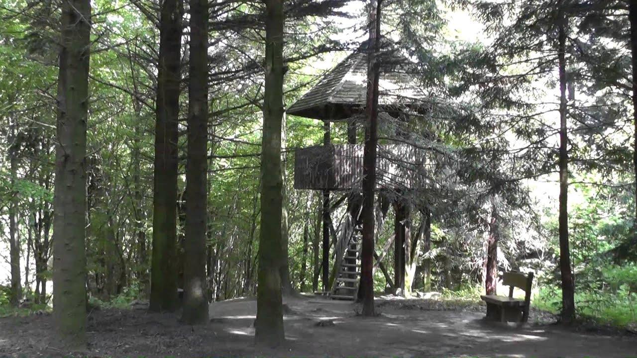 A Jeli Arborétum
