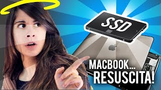 Far resuscitare un MacBook con un SSD! 🐸 Fraffrog