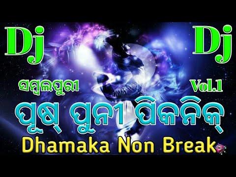 Dj Pushpuni Picnic Special | Sambalpuri Non Break Dj Remix Songs | Vol.1
