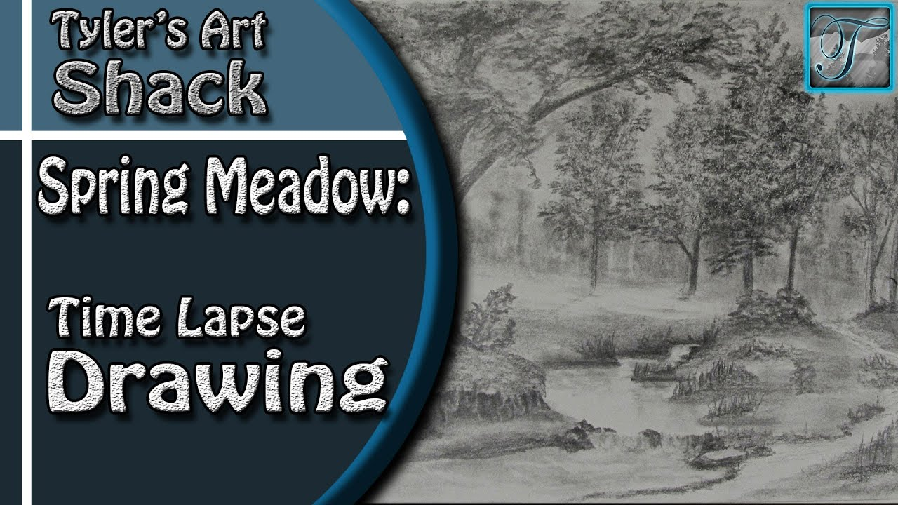Spring Meadow Time Lapse Drawing