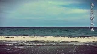 海旅 - パンダライオン&多賀城高校軽音学部】 浜辺に咲いたハマギクの花...