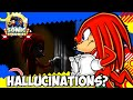 【Sonic Theory: Does Knuckles Suffer from Hallucinations?】